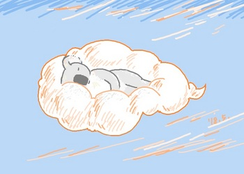 snsコアラと夕暮れの雲.jpg