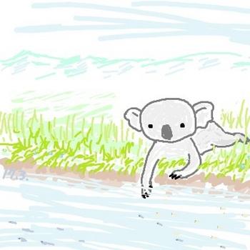snsコアラと小川.jpg