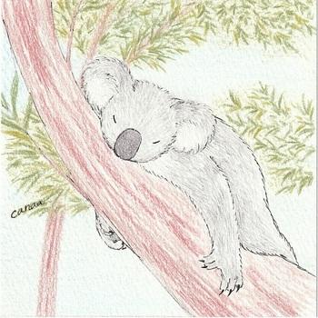 snsコアラと木の上6.jpg