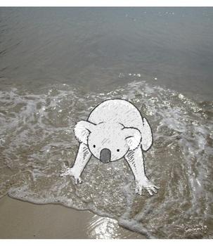snsコアラと浜辺3.jpg
