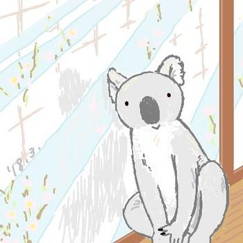 snsコアラと窓辺.jpg