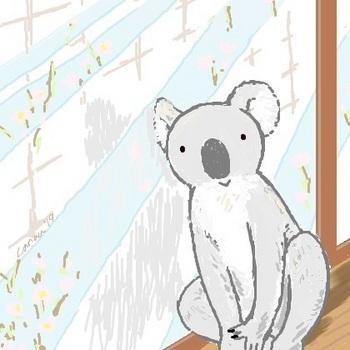snsコアラと窓辺_re.jpg